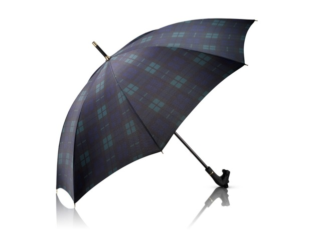 Aramis Great Scott Umbrella Low Res